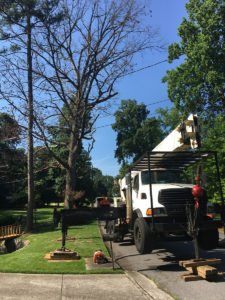 CR TREE EXPERTS CRANE TRUCK